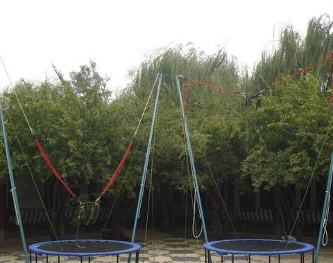 Backyard Bungee Trampoline for Sale