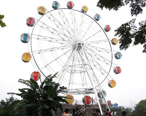 Medium Backyard Ferris Wheel