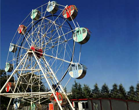 12-cabin Amusement Park Small Ferris Wheel for Sale