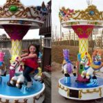 Small Carousel for Sale