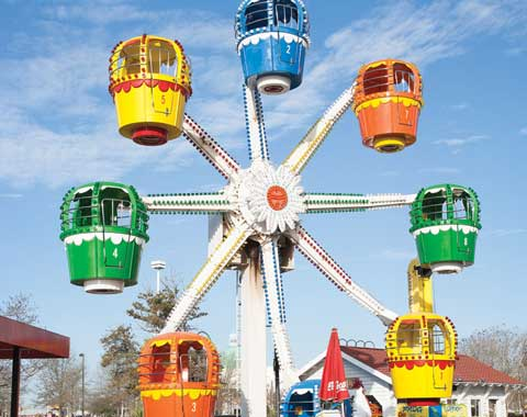 8-cabin Balloon Small Amusement Ferris Wheel for Sale
