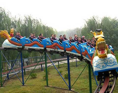 Sliding Dragon Small Roller Coaster for Sale from Beston